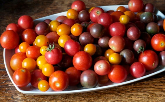 platter of maters