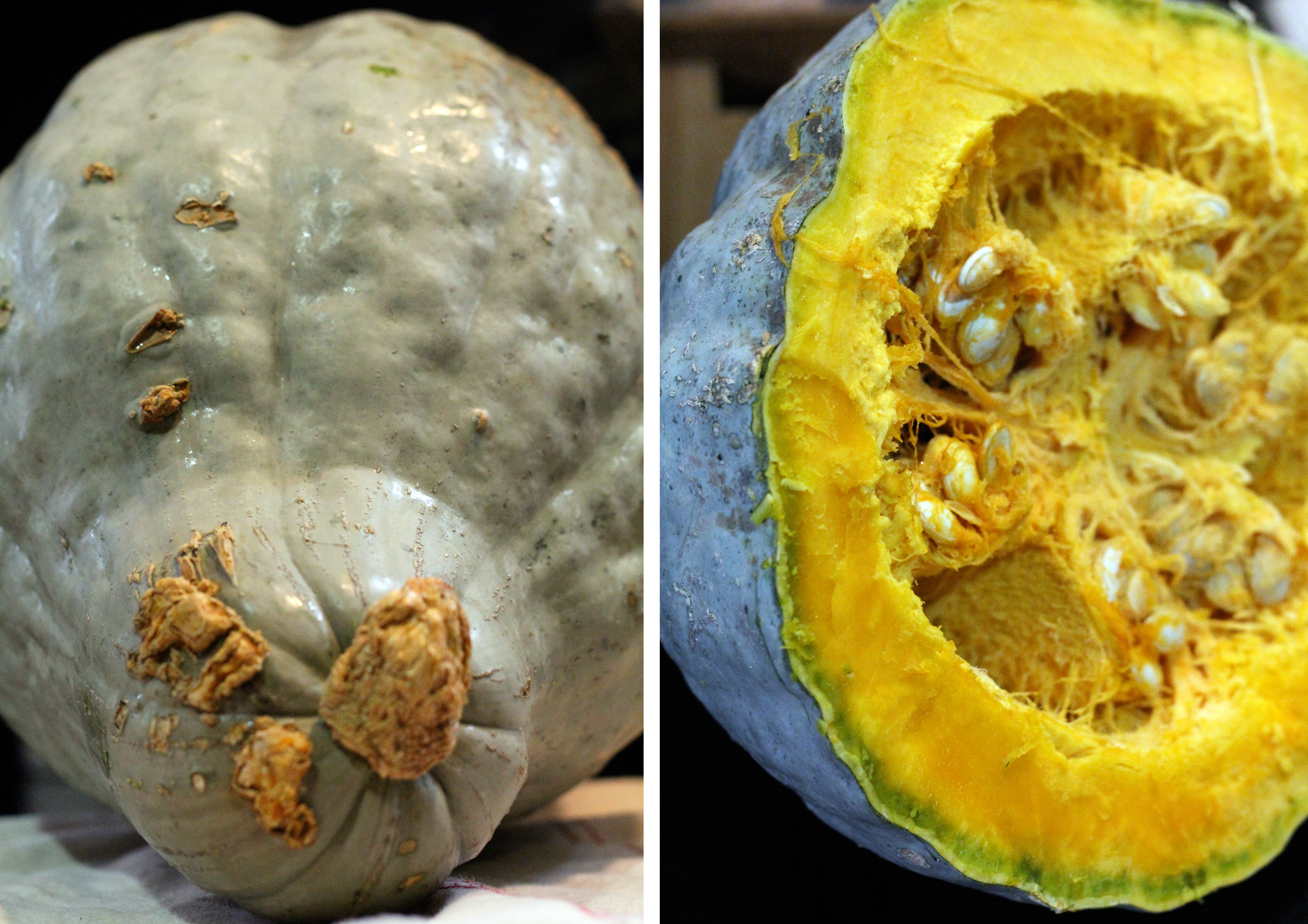 how to cook hubbard squash
