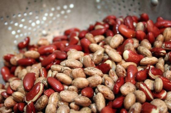 Photo - Beans